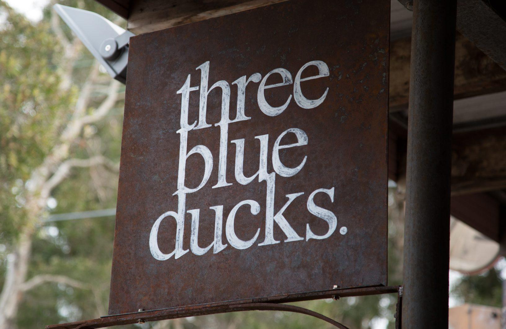 THREE BLUE DUCKS